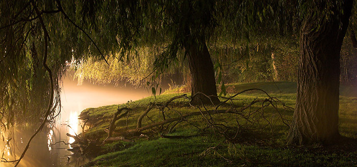 Fog at Anderson Court - Darwin College, Cambridge University in England