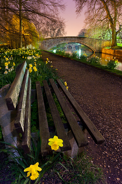 bench surrounded by flowers within Queen's College at Cambridge University in England
