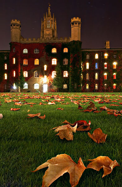 fall leaves in Cripps Court within St. John's College at Cambridge University in England