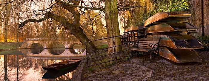 punts lining the River Cam within Trinity College at Cambridge University in England