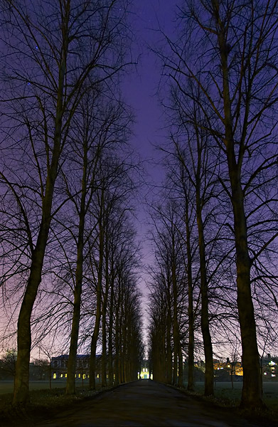 starlit path to the backs from Trinity College at Cambridge University in England