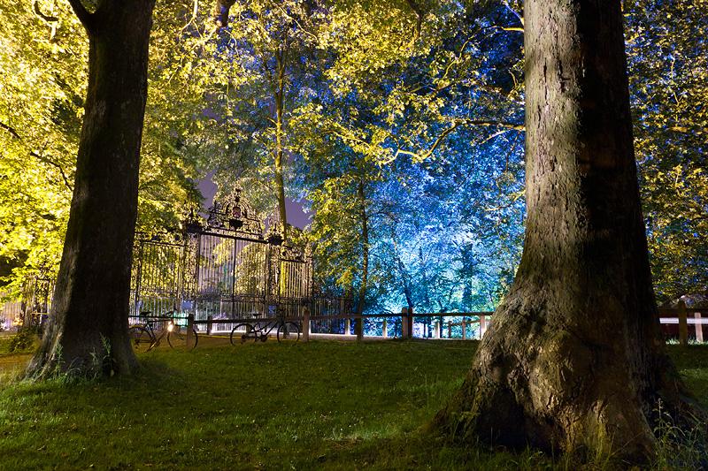 Trinity May Ball Trees - Trinity College, Cambridge University in England