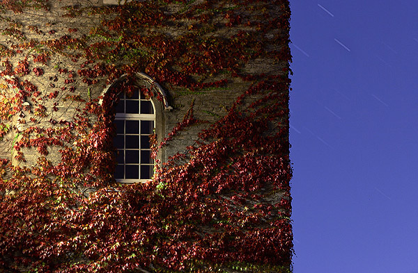stars and window covered with red vines at Cripps Court, within St. John's College at Cambridge University in England