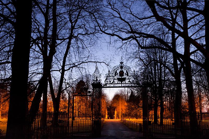 Tree Silhouettes - Trinity College, Cambridge University in England