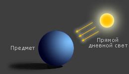 диаграмма: портрет в жёстком солнечном свете