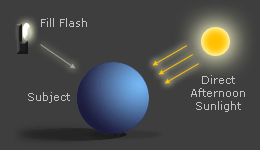 diagram: overhead sunlight with a fill flash