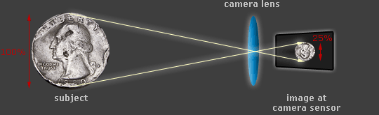 diagram of focusing distance versus magnification