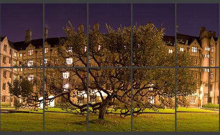 Раскидистое дерево, мозаика