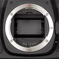 SLR camera sensor
