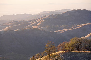 Example of telephoto layering - Mt Hamilton, California