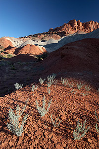 Polarizing Filter with a Wide Angle Lens - Coral Reef National Park, Utah